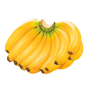 กล้วยหอมเป็นผลไม้มงคลไหว้แม่ย่านางรถที่ขาดไม่ได้